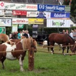 Loenense Moandag
